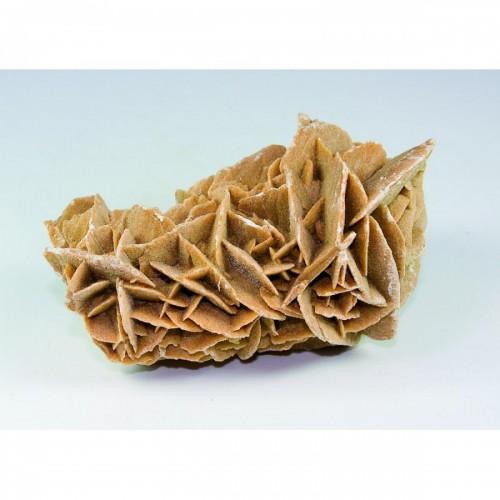 Пясъчна, пустинна роза 10 см